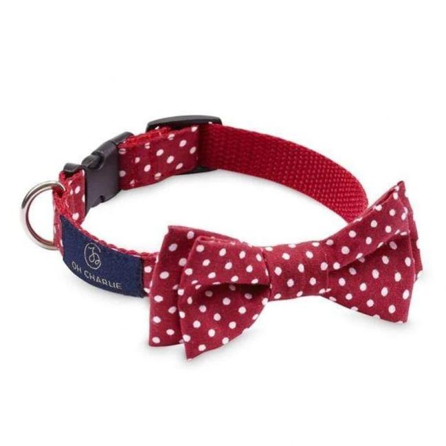 Street Bowtie by Oh Charlie - Red & White Dots