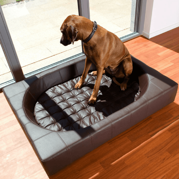 Pet Interiors Luxury Dog Bed Large / Black Cube Faux Leather Luxury Dog Bed By Pet Interiors PetsOwnUs - Pets Own Us