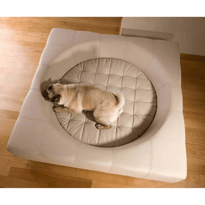 Pet Interiors Luxury Dog Bed Small / Cream Cube Faux Leather Luxury Dog Bed By Pet Interiors PetsOwnUs - Pets Own Us