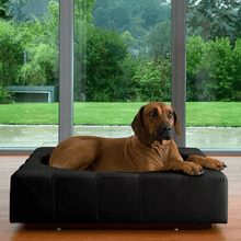 Pet Interiors Luxury Dog Bed Large / Black Cube Leather Luxury Dog Bed By Pet Interiors PetsOwnUs - Pets Own Us