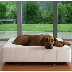 Pet Interiors Luxury Dog Bed Large / Cream Cube Leather Luxury Dog Bed By Pet Interiors PetsOwnUs - Pets Own Us