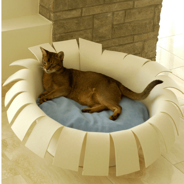 Pet Interiors Cat Beds Cream / Cream Orthopedic Cat Bed By Pet Interiors- Cream Felt Crown PetsOwnUs - Pets Own Us