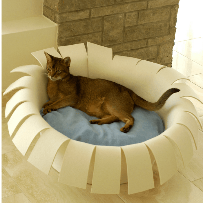 Orthopedic Cat Bed By Pet Interiors- Cream Felt Crown