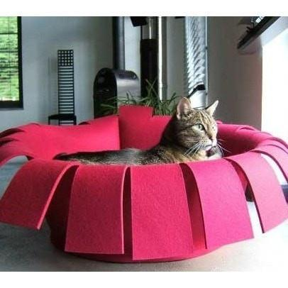 Pet Interiors Cat Beds Red / Cream Orthopedic Cat Bed By Pet Interiors- Red Felt Crown PetsOwnUs - Pets Own Us