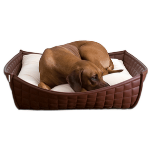 Pet Interiors Dog Beds Xtra Small / Pea Green Orthopedic Dog Bed By Pet Interiors- Brown Leather Bowl PetsOwnUs - Pets Own Us