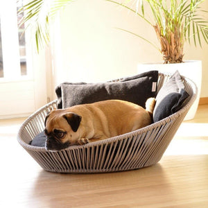 Pet Interiors Pet Bed Small / Caramel Siro Twist Orthopedic Pet Bed by Pet Interiors PetsOwnUs - Pets Own Us