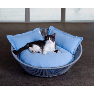 Pet Interiors Pet Bed The Siro Twist By Pet Interiors - Large Orthopaedic Dog Bed PetsOwnUs - Pets Own Us