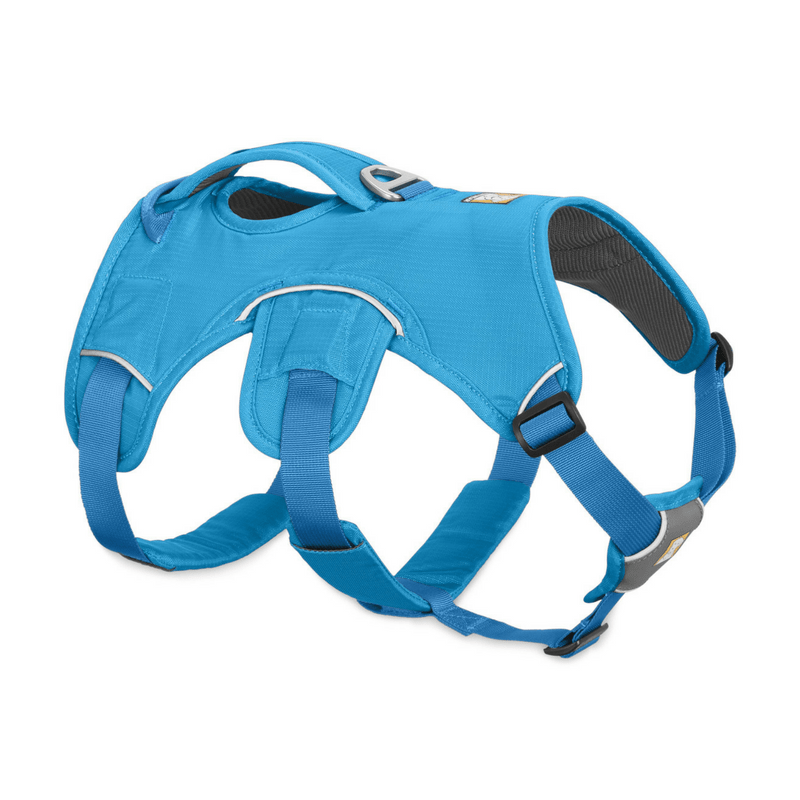 Ruffwear Pet Collars & Harnesses XXS Web Master™ Harness by Ruffwear - Supportive Multi-Use Harness - Blue Dusk 30102-407S2 PetsOwnUs - Pets Own Us