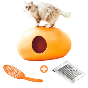 Sin Design Cat Litter Box Orange / No Poopoopeedo Cat Litter by Sin Design - Red PetsOwnUs - Pets Own Us