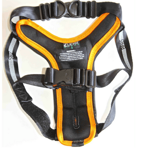 Sleepypod Pet Collars & Harnesses Small Clickit Sport Car Dog Safety Harness by Sleepypod - Orange Blossom PetsOwnUs - Pets Own Us