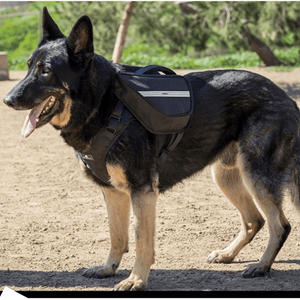 Sleepypod Harness Saddle Bag Clickit Terrain Pack Saddle Bag PetsOwnUs - Pets Own Us