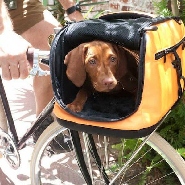 Buy Sleepypod Air Airline Approved Pet Carrier In The Uk