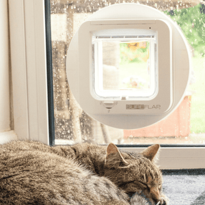 Sure Flap Smart Pet Tech White SureFlap Microchip Cat Flap - Glass Installation 5060180390006 PetsOwnUs - Pets Own Us