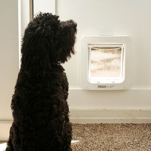 Sure Flap Smart Pet Tech White SureFlap Microchip Pet Door - Door Installation 5060180390280 PetsOwnUs - Pets Own Us