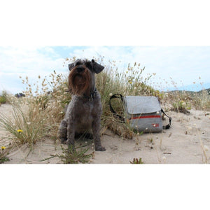 Travel Wags Pet Carriers and Accessories Default Title The Walker Dog Walking Bag Set by Travel Wags PetsOwnUs - Pets Own Us