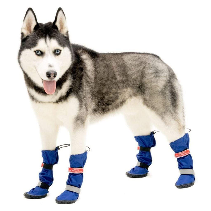 Dog Wellies Walkin' All-Weather Boots - Set
