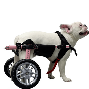 Wheels4Dogs Walkin' Belly Support PetsOwnUs - Pets Own Us