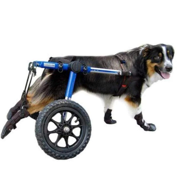 Wheels4Dogs Walkin' Boots and Stirrup Kit PetsOwnUs - Pets Own Us
