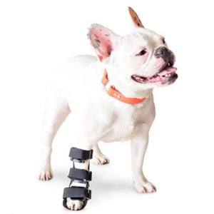 Wheels4Dogs Walkin' Front Splint PetsOwnUs - Pets Own Us