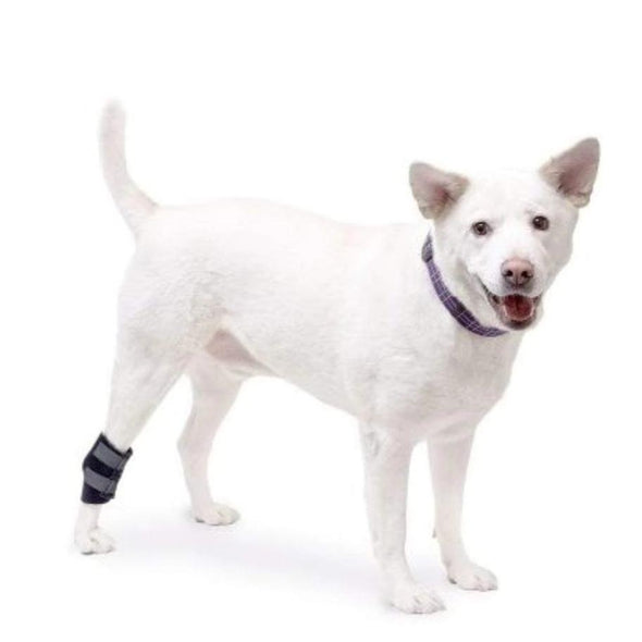 Wheels4Dogs Walkin' Hock Wrap (Rear Only) PetsOwnUs - Pets Own Us