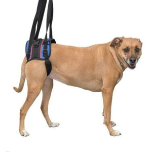 Wheels4Dogs Walkin' Lift Combo Harness – Rear PetsOwnUs - Pets Own Us