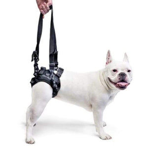 Wheels4Dogs Walkin' Lift Rear Harness PetsOwnUs - Pets Own Us