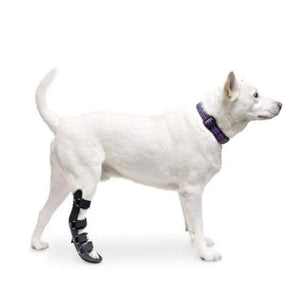 Wheels4Dogs Walkin' Rear Splint PetsOwnUs - Pets Own Us
