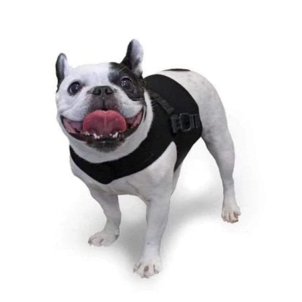 Wheels4Dogs Walkin' Small Front Vest PetsOwnUs - Pets Own Us