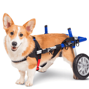 Wheels4Dogs Dog Wheelchair Walkin' Wheels CORGI Dog Wheelchair PetsOwnUs - Pets Own Us