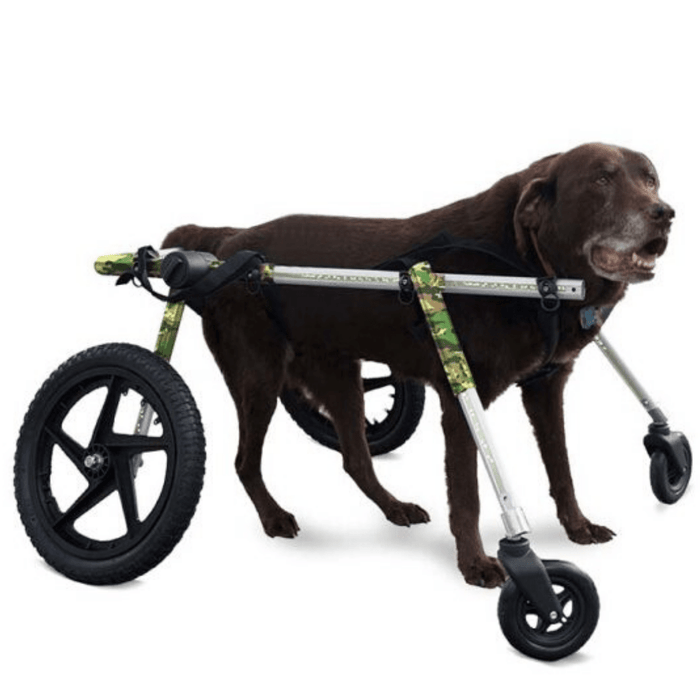 Walkin' Wheels Full Support/4-Wheel LARGE