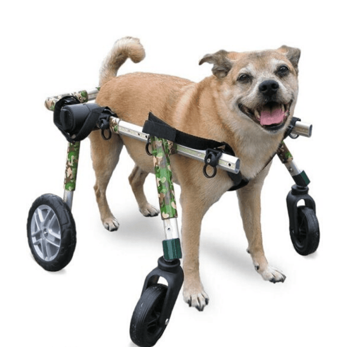 Walkin' Wheels Full Support/4-Wheel MED/LARGE