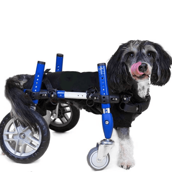 Wheels4Dogs Dog Wheelchair Walkin' Wheels Full Support/4-Wheel SMALL PetsOwnUs - Pets Own Us