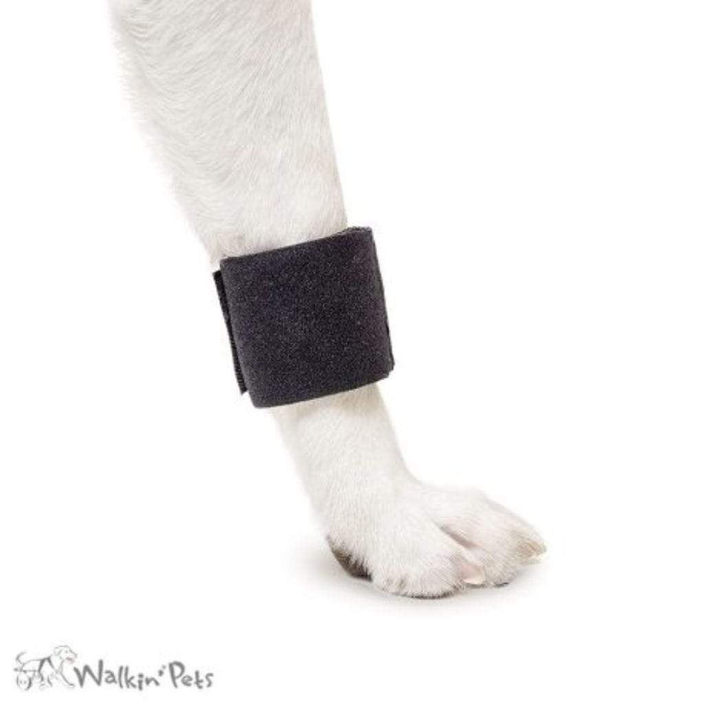 Wheels4Dogs Walkin' Wrist Wrap (Front Only) PetsOwnUs - Pets Own Us