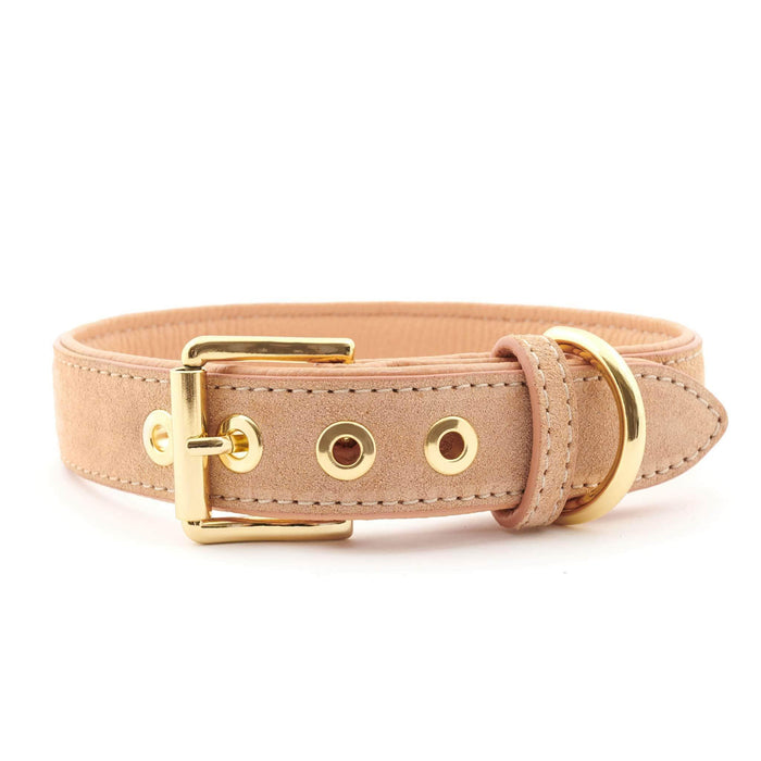 Suede Leather Dog Collar by William Walker - Coral