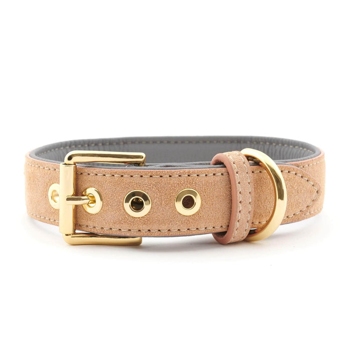 Suede Leather Dog Collar by William Walker - Coral X Sea Salt