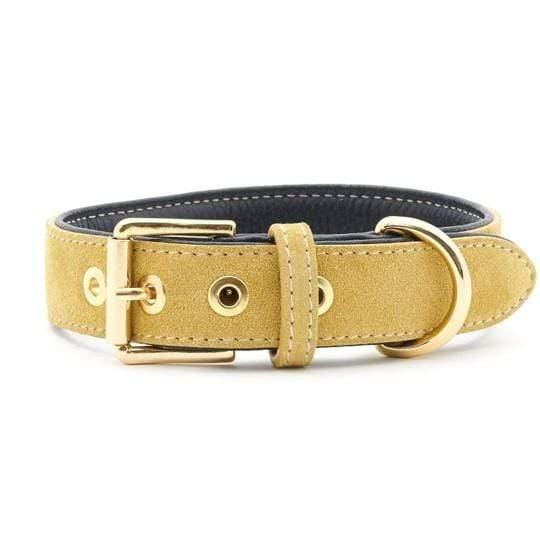 Suede Leather Dog Collar by William Walker - Midnight X Sun