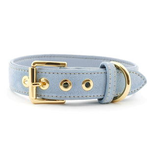 William Walker Dog Collar & Lead Suede Leather Dog Collar by William Walker - Sky PetsOwnUs - Pets Own Us