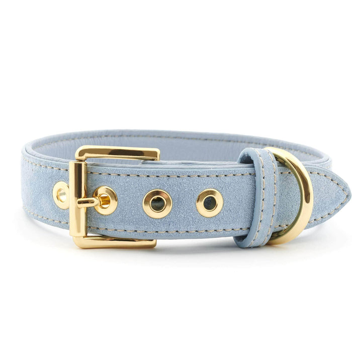 Suede Leather Dog Collar by William Walker - Sky