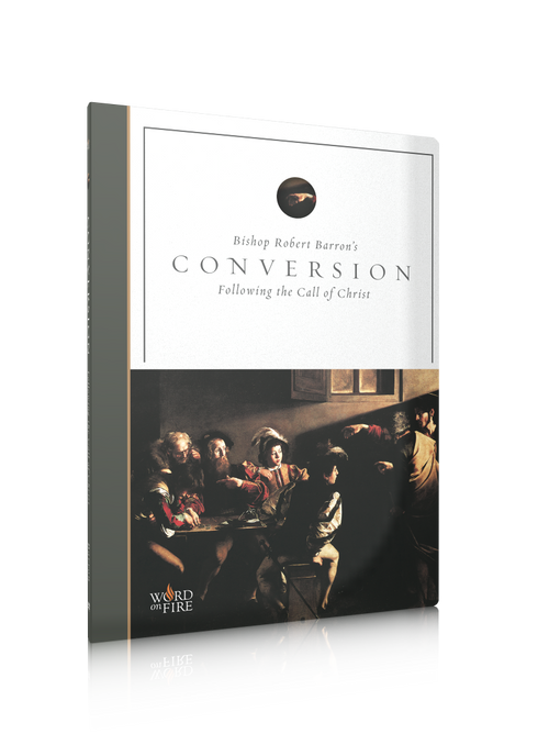 "In Santa Maria del Monte our goal is to evangelize and our products help us to do so, that is why we present you this Dvd ""Conversion"". Most of the philosophies of a life well lived are based on having something.The purpose of the Christian life is to grow in a loving relationship with Christ, becoming more to him through the immersion of our entire being in his Church, the Body of Christ.. Enjoy it and help us carry the message of Christ. Be part of Our Mission! Our products speak for themselves."