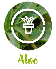 Aloel Facial Mask Ingredients