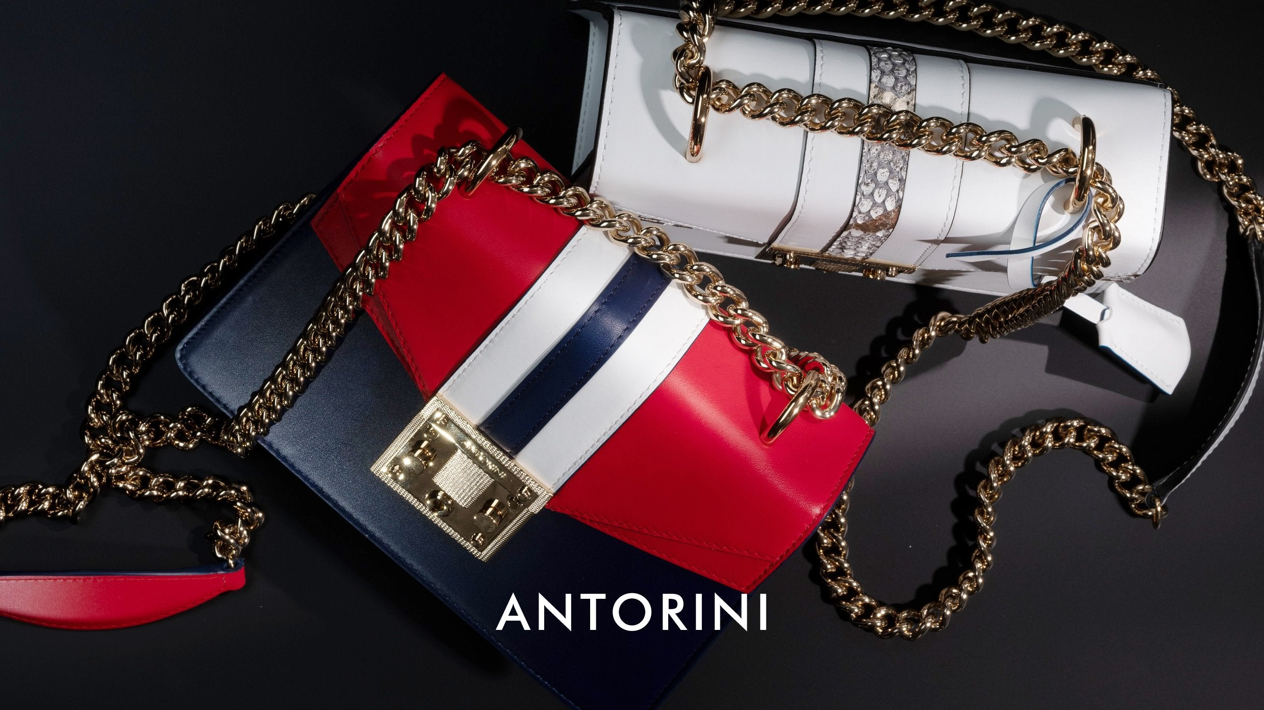luxury bags with chain