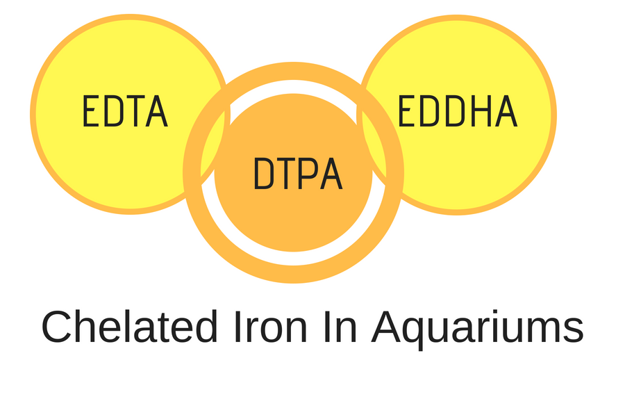 Chelated Iron In Aquariums - DTPA, EDTA or EDDHA