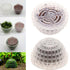 products/ETB_Moss_Dome_2.jpg
