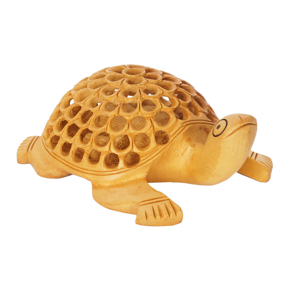 WA1007-Wood Turtle  - Multiple Sizes