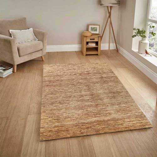 Looking After Living Room Rug