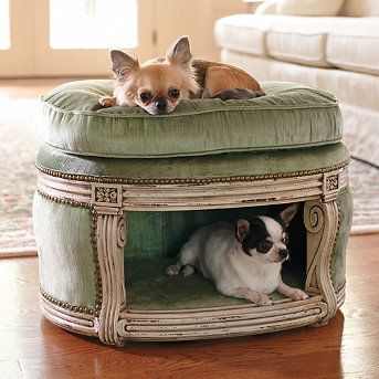 a dog bed that fits in with the rest of your house! would be great for the cats too!: