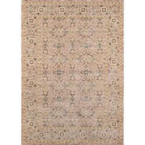 Tan Boho Chic Area Rug
