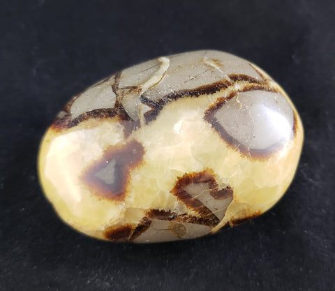 Septarian Pebble