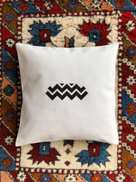 Load image into Gallery viewer, Astrotolia Aquarius Pillow Cover
