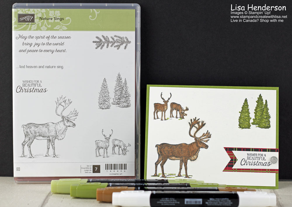 November Stampin' Blends Club